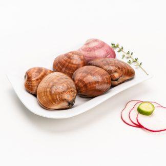 Concha Fina (250 grs)