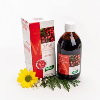 Arandano Rojo Jugo Concentrado (Bote de 490 ml)
